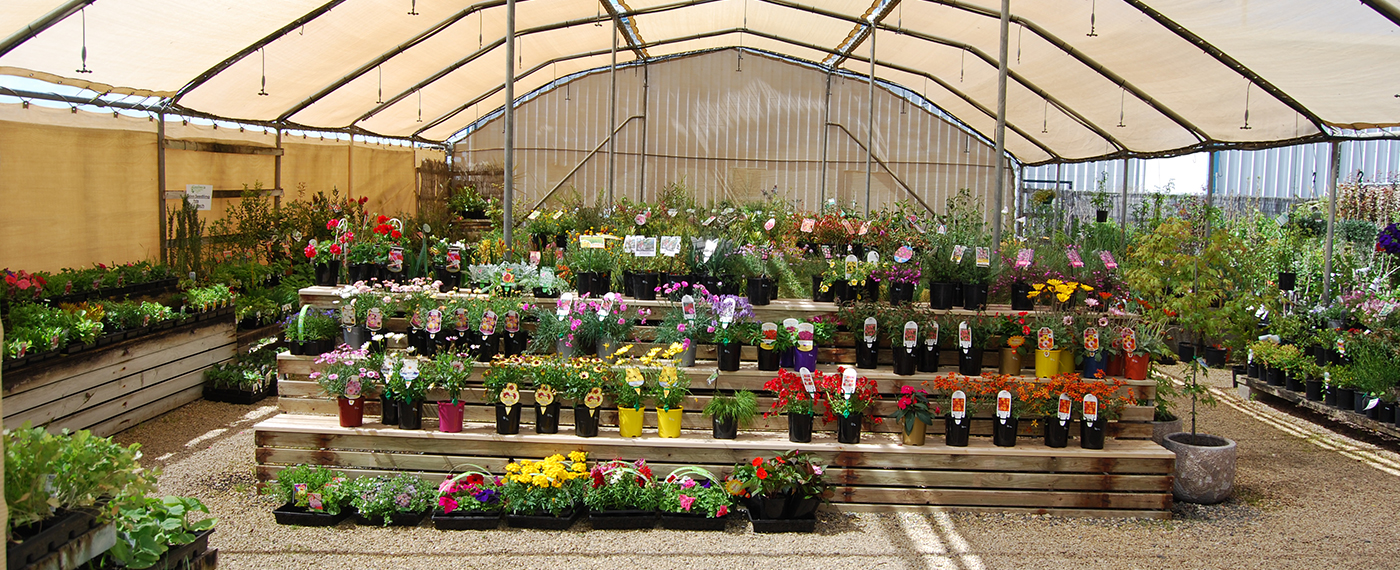 Goolwa Garden Centre wide range of plants and garden supplies